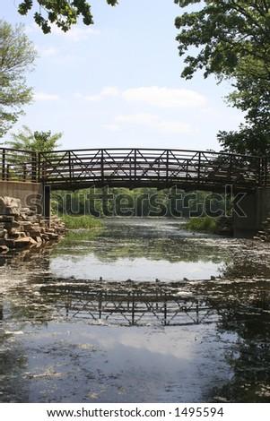 forest bridge - stock photo