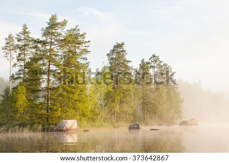Forest by the lake and foggy morning - stock photo