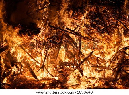 Forest Fire (Close View) - stock photo