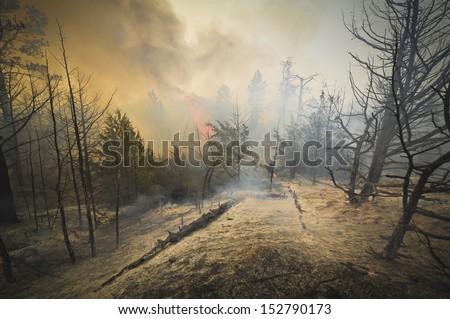 Forest fire, Sunday July 22, 2012 near Springview, Nebraska - stock photo