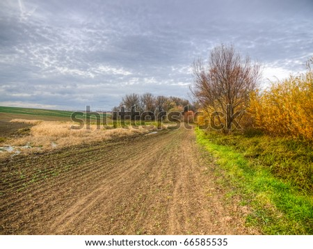 Forest fragments in farmland with fields, meadows and swamps during the late autumn - stock photo