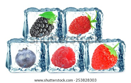 forest fruits - stock photo