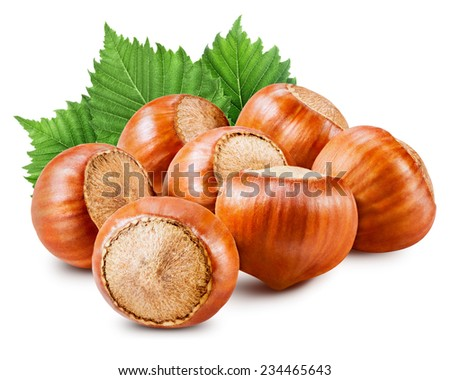 Forest hazelnuts isolated on white background.  - stock photo