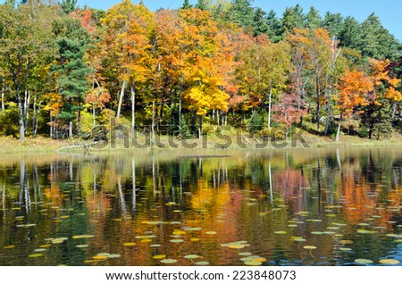 Forest lake in sunny autumn day in Canada - stock photo