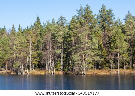 Forest lake in taiga with ice in autumn - stock photo