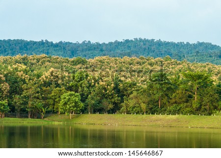 Forest lake reflecting trees in Thailand - stock photo