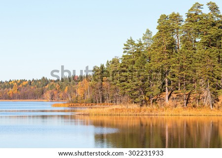 Forest lake with reflections in the water - stock photo