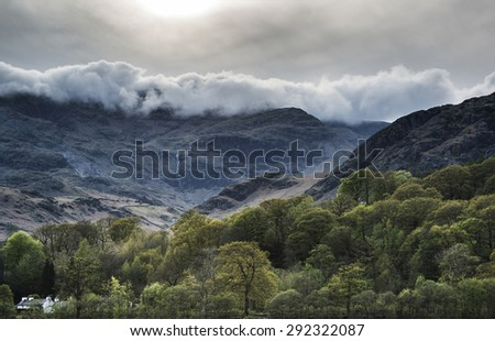 Forest landscape next to Coniston Water in Lake District in England - stock photo