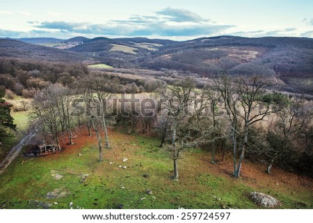 Forest, pastures, meadows and tourist path. Natural background. - stock photo