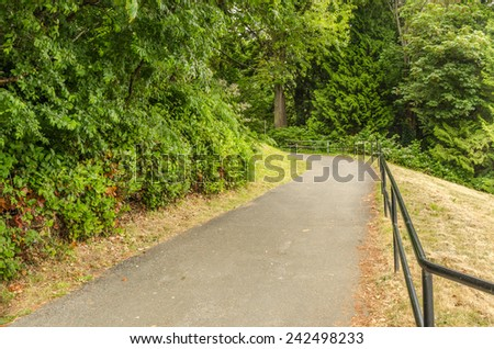 Forest Paved Path  - stock photo