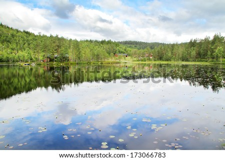 Forest reflection on a lake in Norway. - stock photo