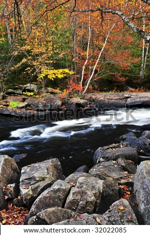 Forest river in the fall. Algonquin provincial park, Canada. - stock photo