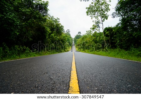 Forest road at Khaoyai National Park (The World Heritage of nature) Thailand. - stock photo