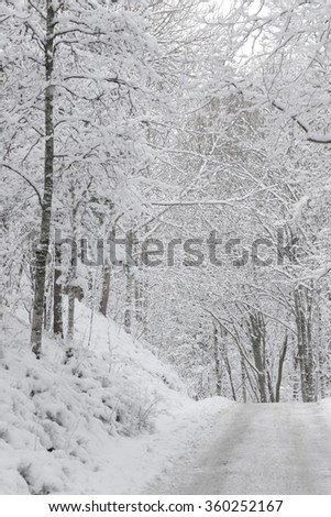 Forest road covered in white snow during a cold winter day. Sweden - stock photo