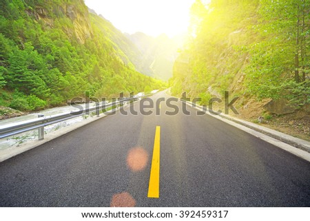 forest road in sunset - stock photo