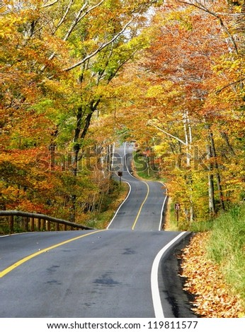 forest road, New England - stock photo