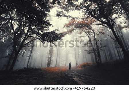forest road with man - stock photo