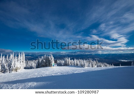 Forest skiing country in British Columbia, Canada - stock photo