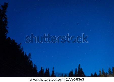 Forest under blue dark night sky with many stars. Space background - stock photo