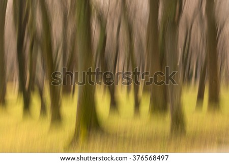 Forest with moving effect with green grass - stock photo