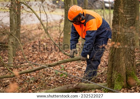 forest worker background - stock photo