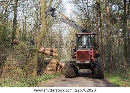 Forestry in a Dutch forest. Truck is loading pinetree trunks. - stock photo