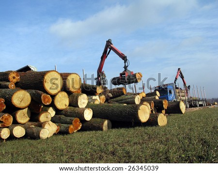 Forestry workers in the loading of logs with a crane. - stock photo
