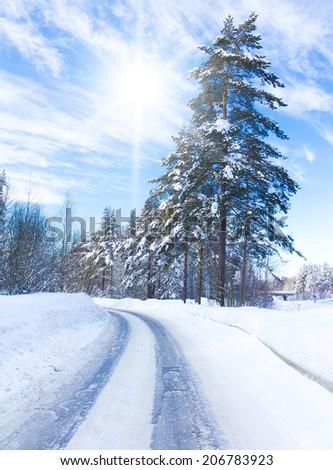 Forever Winter!  - stock photo