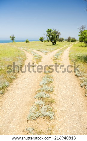 fork roads horizon with grass and blue sky - stock photo