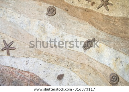 Fossil wall texture background - stock photo