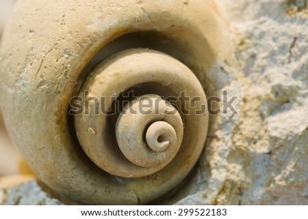 Fossilized helical shell. - stock photo