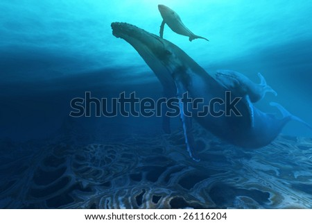 FOSSILS - A Humpback mother cow with her twin baby calves. - stock photo