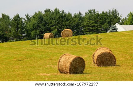 four bales of hay on a new england hillside - stock photo