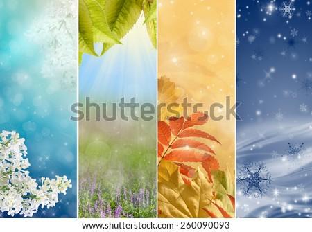 Four bright seasons - spring, summer, autumn, winter. - stock photo