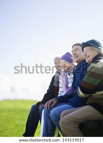Four cheerful senior friends spending time together at park - stock photo