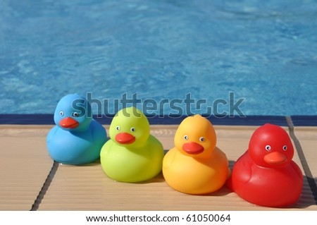 four colorful rubber ducks at the pool side (kids toy) - stock photo