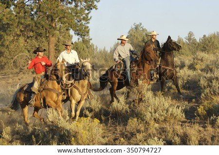 Four Cowboys roping and riding - stock photo