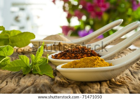 Four different spices in a china spoon, pepper, chili, curry and cumin - stock photo