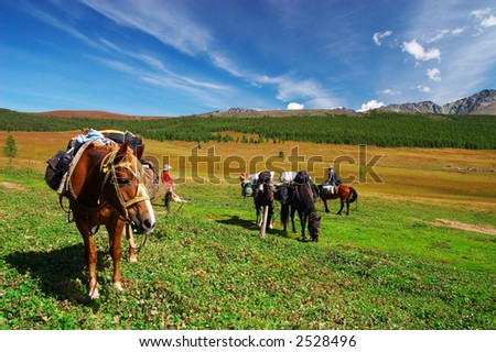 Four horses, two mens, girl and mountains. Altay. Russia. - stock photo