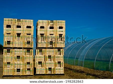 Four retail crates near greenhouse - stock photo