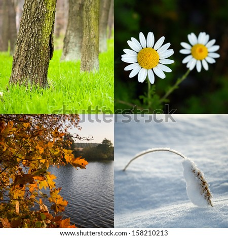 Four season. All used photos belong to me. - stock photo