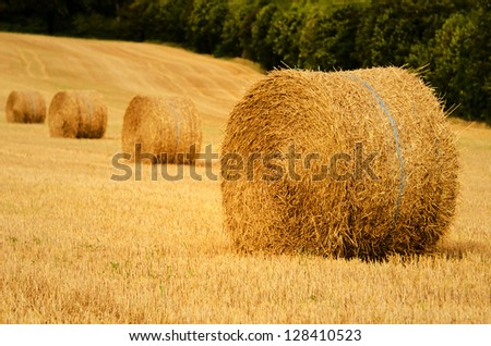 four straw bale in a field - stock photo