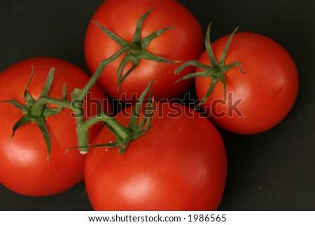 Four Tomatoes - stock photo