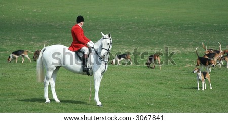 fox hunting - stock photo