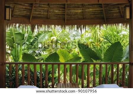 fragment like  view of nice misty tropical forest - stock photo