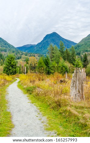 Fragment of Furry Creek trail in Whistler, Vancouver, Canada. - stock photo