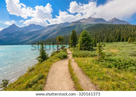 Fragment of mountain Bow lake trail in Alberta, Canada, Rocky Mountains. - stock photo