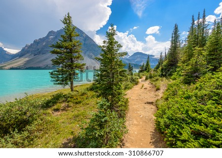 Fragment of mountain lake trail in Alberta, Canada, Rocky Mountains. - stock photo