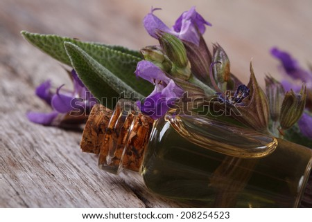 fragrant essence of sage in a glass bottle on the table macro. horizontal