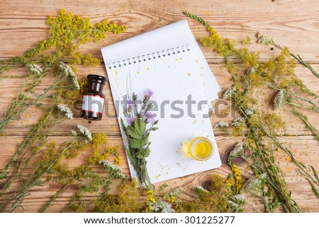 fragrant oil in the bottles, herbs and blank notepad - stock photo